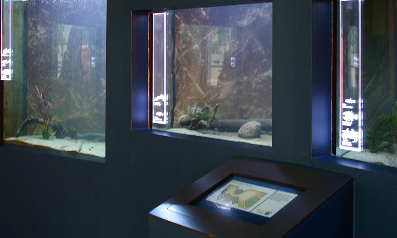 Biosphärium Terminal Aquarien